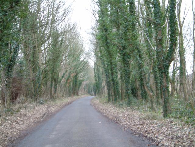 Lodge Lane, Chute Cadley