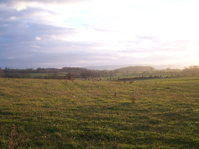View South from Old Hillend Farm