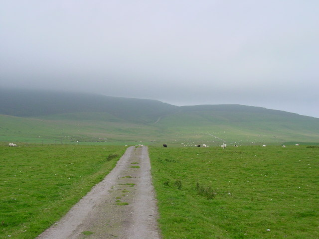 Looking west near the start of the track from Hillwell to Fitful Head