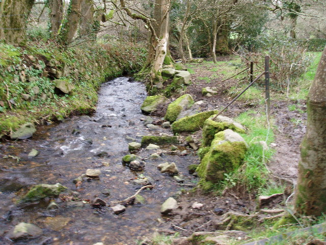 Stream between Trereife and Trewidden