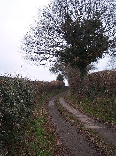 Lane to Dodd's Mill
