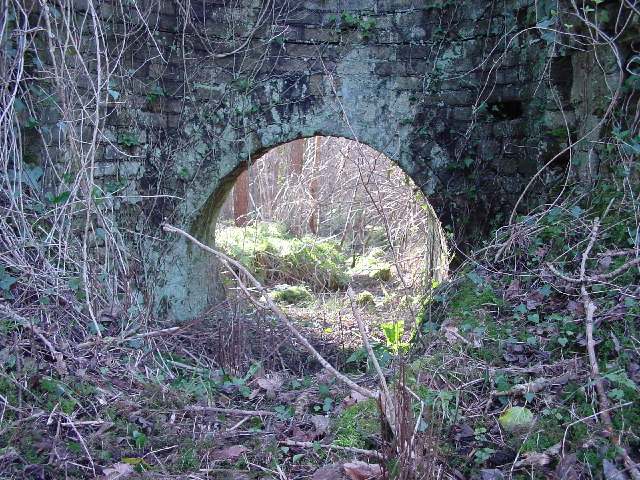 Old Mine Buildings in Flimby Great Wood