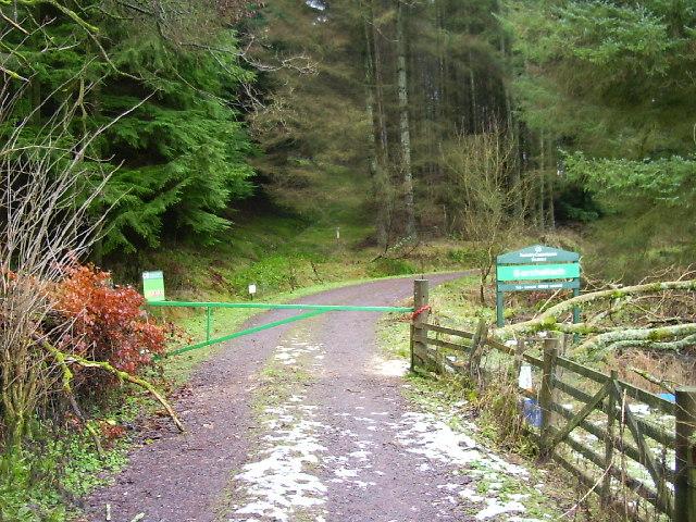 Track into woods near Craigniven