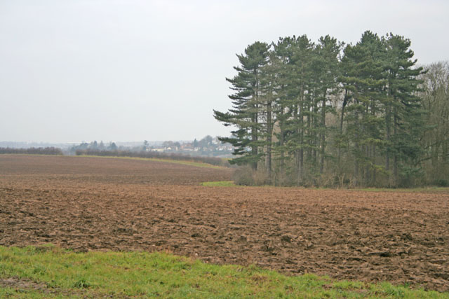 Farmland near Stoughton, Leicester