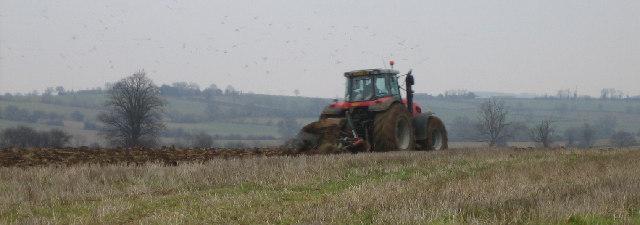 Farmland near Everdon