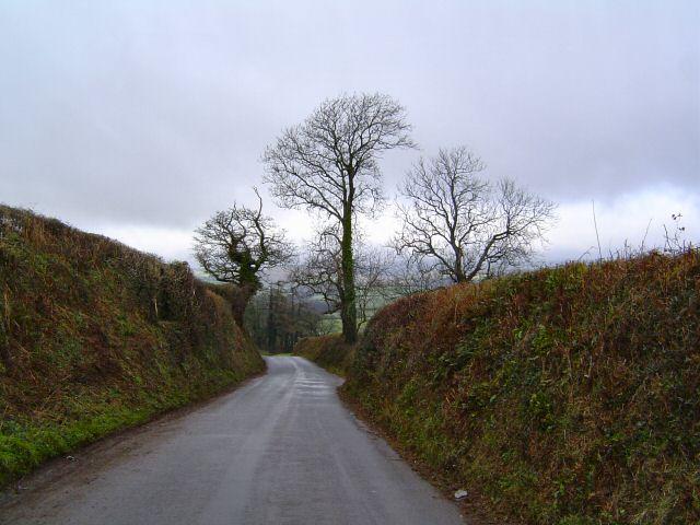 Lane leading down to Fork Cross - south Devon