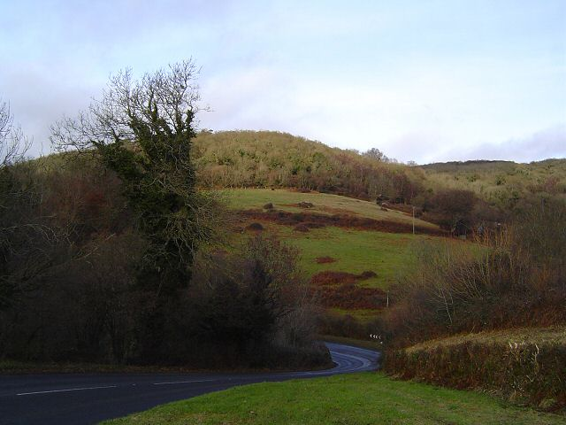Near Shaptor - Devon