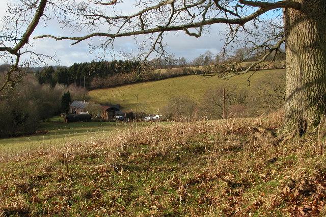 Bannut Tree Farm, Kentchurch