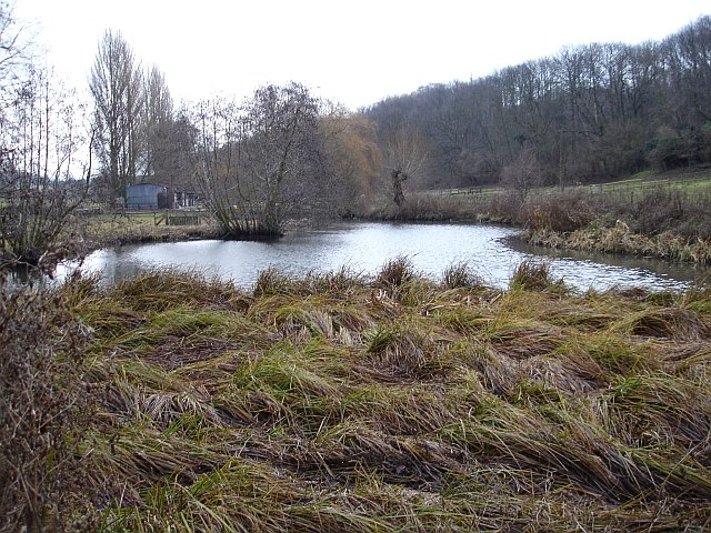 Boxley mill pond
