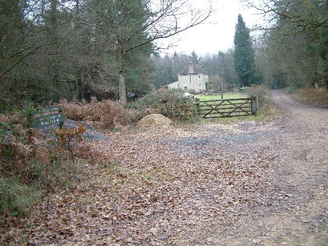 Plumley Farm, Ringwood Forest