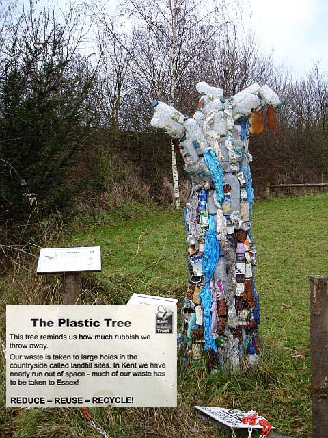 Plastic Tree at Tyland Barn