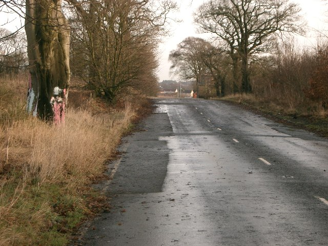 Disused Road