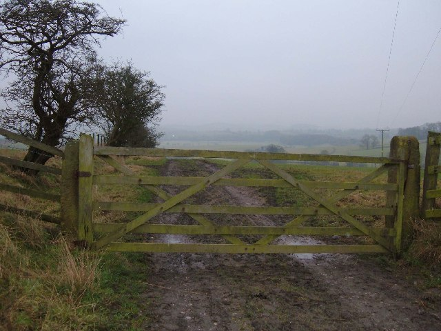 Gated Bridleway near Bank Newton
