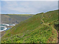 SX1496 : The Coast Path at  Brays Point Cornwall by Clive Perrin