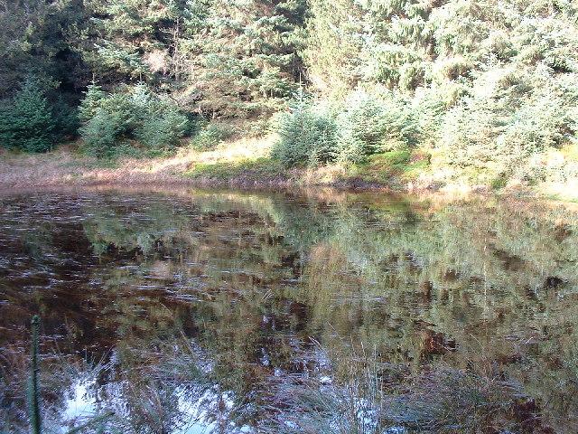 Lochan, Forest of Ae