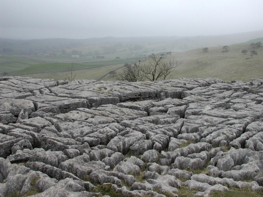 Limestone pavements at Malham Cove