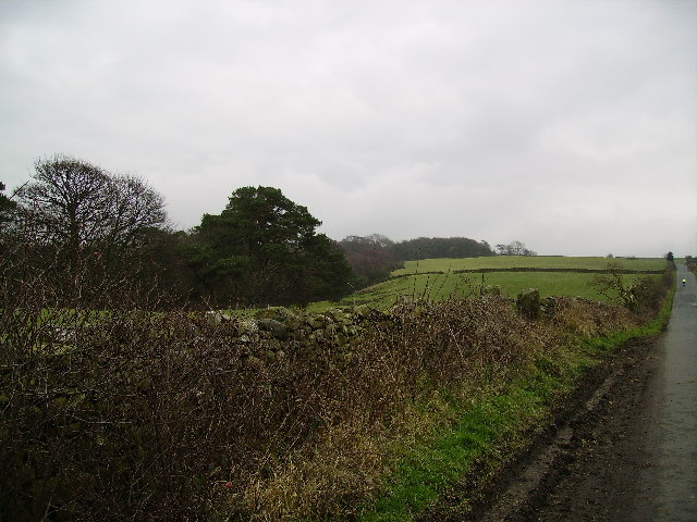 Road to Littledale