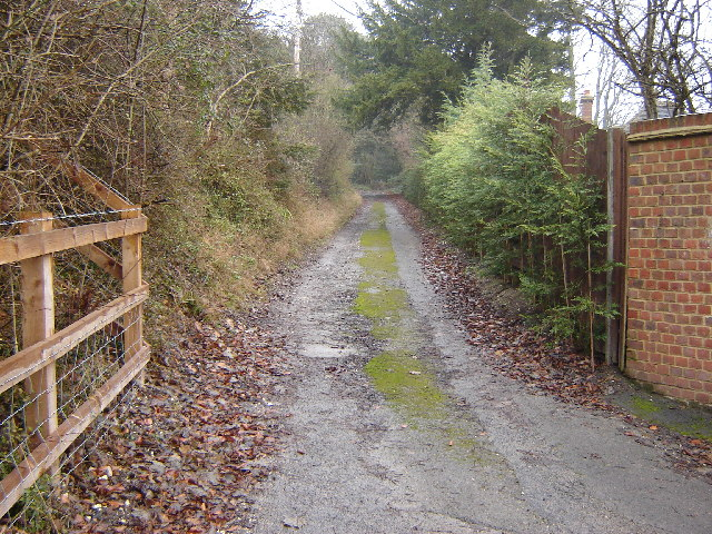 Old Road off the Hog's Back