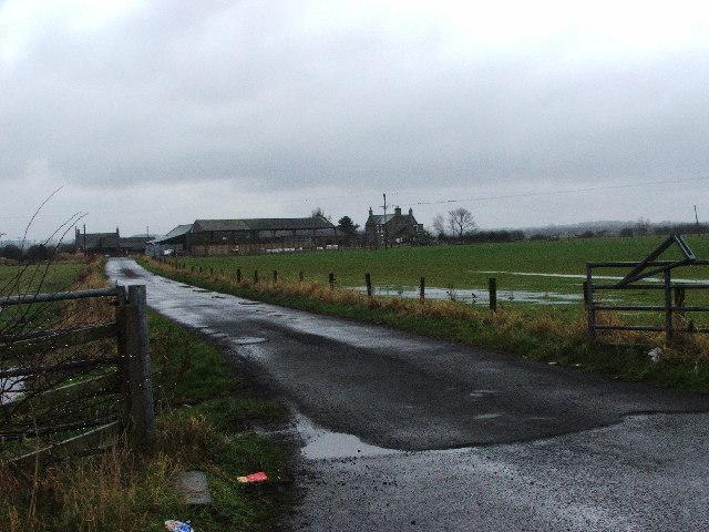 Newsham South Farm