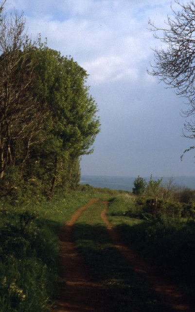 Ditchedge Lane