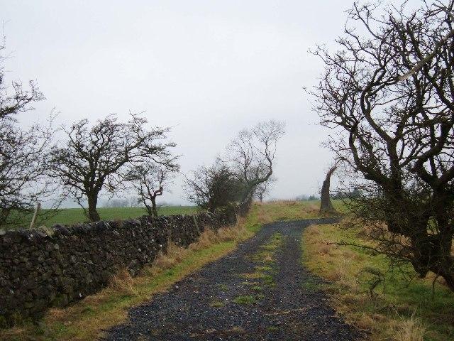 Bridleway near Slack Farm