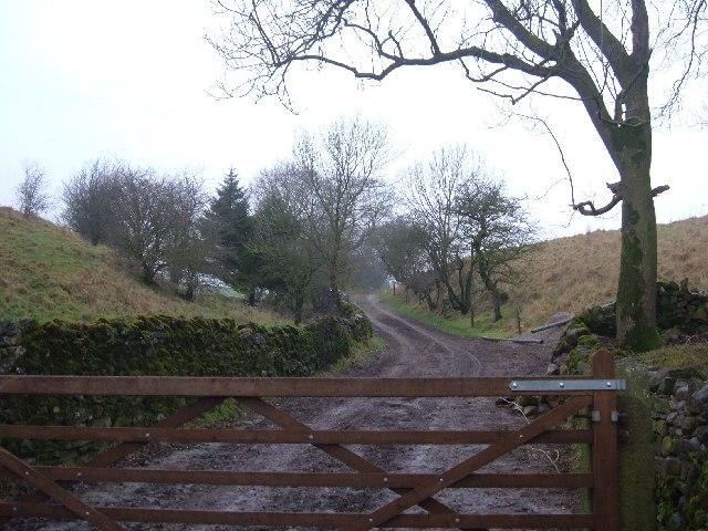 Bridleway near Stainton