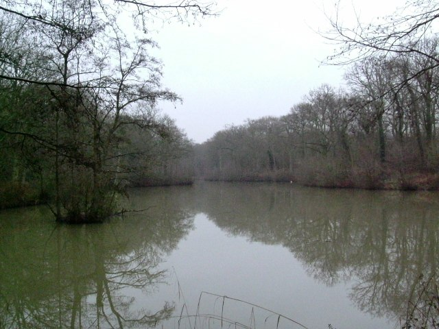 Lake on Marles Lane
