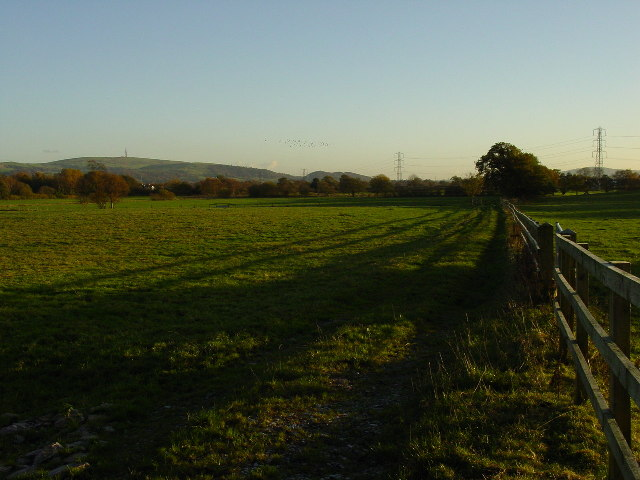 View south from Pennington's Lane near Macclesfield
