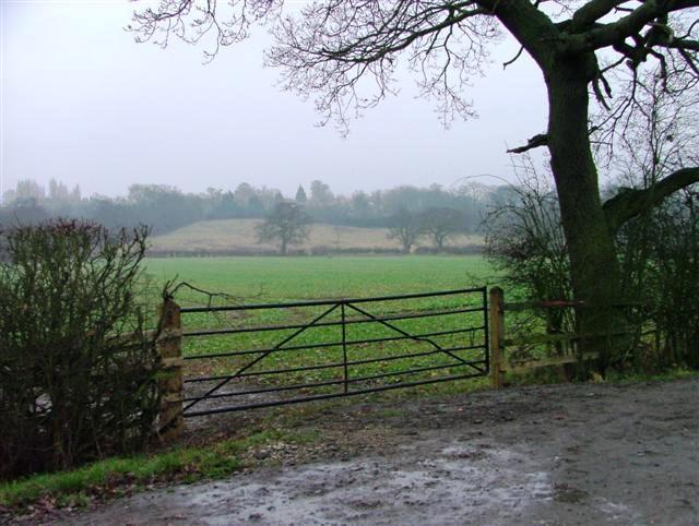 Fields Off Widmerpool to Kinoulton Road