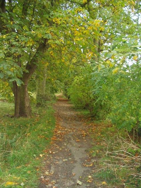 Path off Outwood Lane, Horsforth, Leeds