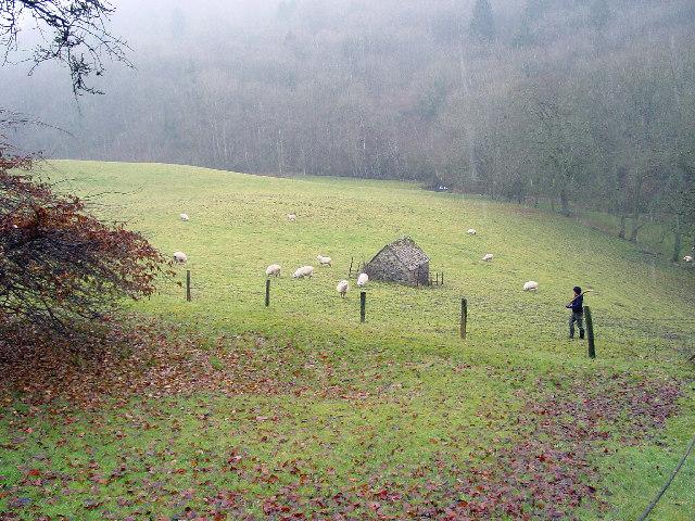 Fields near Valley Farm, Edgeworth