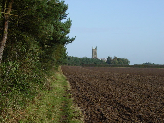 On the path between Reepham and Salle