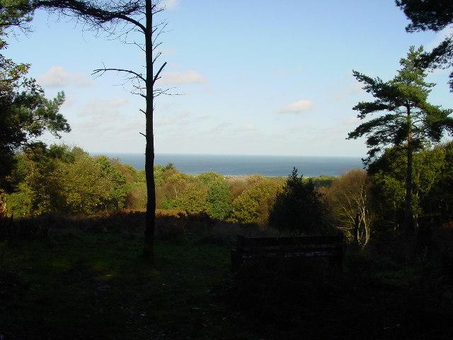 On Beacon Hill near West Runton