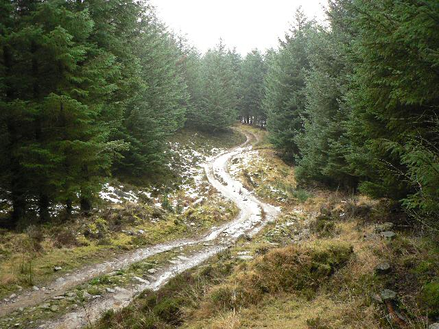 Off-road driving track in Rotmell Wood