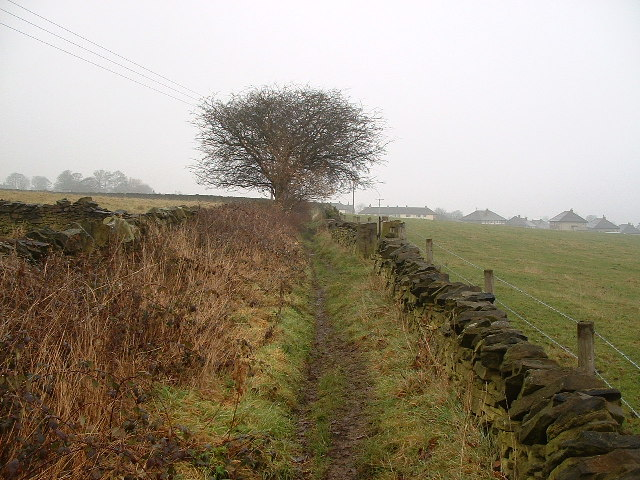 Footpath to Netherthong