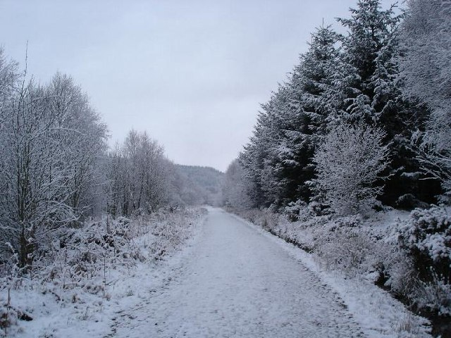 The 'blue' path