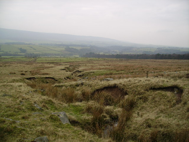 Thorn Clough and Woodsyke Plantation