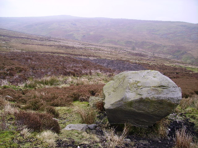 Tarnbrook Fell