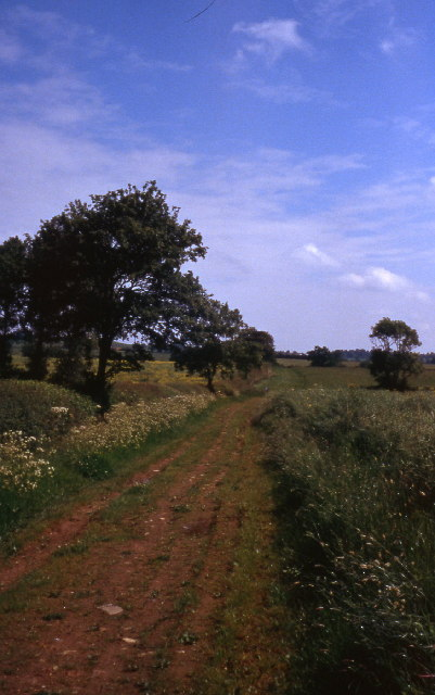 lane near Cottesbrooke