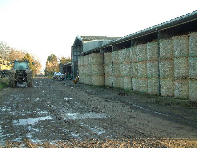 Bonerbo Farm