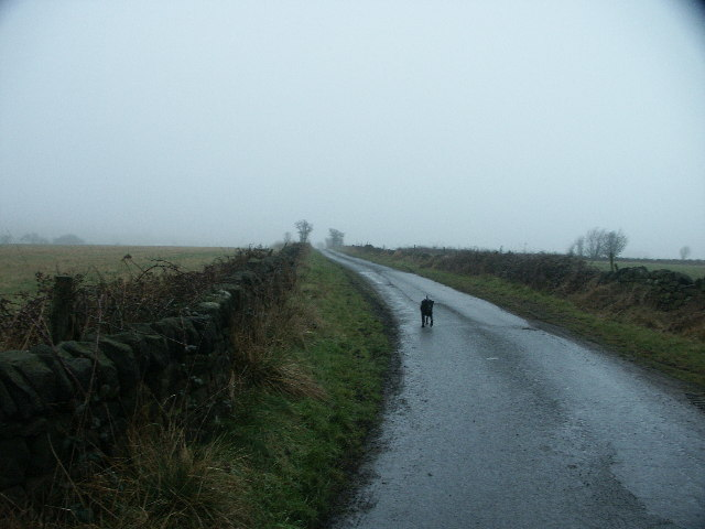 Mist setting in on a moorland road