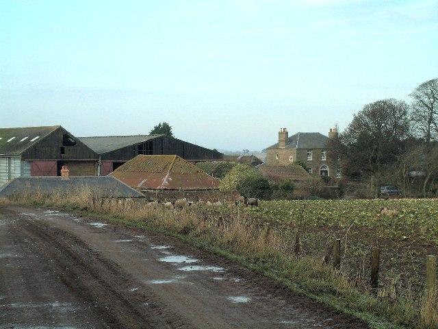 West Newhall Farm