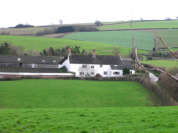 Escott near Stogumber