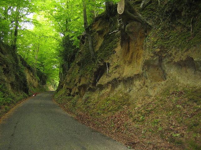 Hollow lane into Montacute