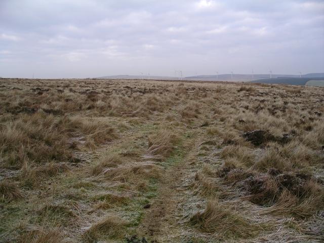 Track, Bothwell Hill