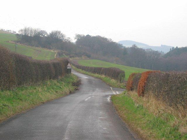 Road near Spott.