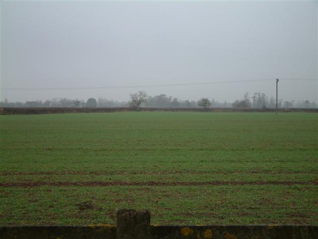 Looking North across the fields to Bentham