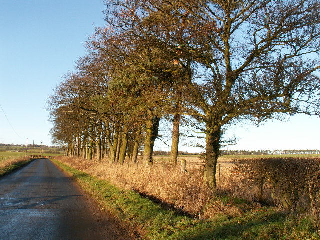 By Hatton Farm