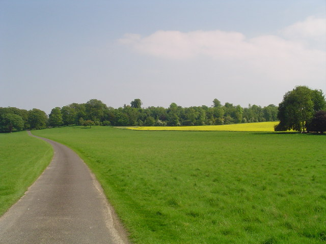 Charborough Park, near Wimborne Dorset