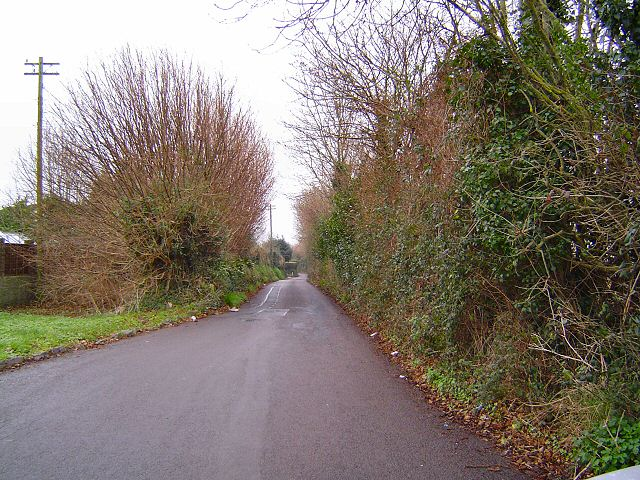 Nut Bush lane - Torbay